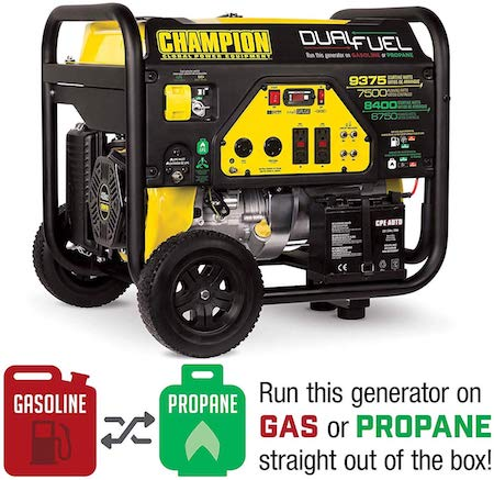 Champion Dual Fuel Portable Generator with Electric Start